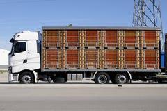 Levande lastbilar för djur transport Royaltyfri Foto