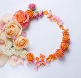 Levande rosram Härlig blom- bakgrunds… bakgrund med färgrika blommor Card mallen till ferier eller bröllop med idérikt utrymme fö Arkivbild