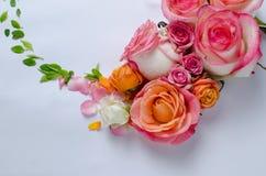 Levande rosram Härlig blom- bakgrunds… bakgrund med färgrika blommor Kortmall som fjädrar ferier med idérikt utrymme för text Royaltyfri Foto