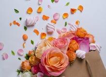 Levande rosram Härlig blom- bakgrunds… bakgrund med färgrika blommor Kortmall som fjädrar ferier med idérikt utrymme för text Royaltyfria Foton