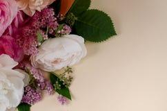 Levande rosram Härlig blom- bakgrunds… bakgrund med färgrika blommor Kortmall som fjädrar ferier med idérikt utrymme för text Royaltyfria Bilder