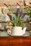 Levander in pot. Levander plant in stylish vintage pot on wooden table. Sunlit Stock Photo