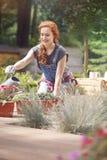 Levando a cabo uma carreira de jardinagem Imagens de Stock