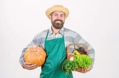 Levando um saco saud?vel Alimento org?nico e natural Halloween feliz cozinheiro chefe do homem com a colheita rica do outono alim foto de stock