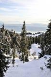 Levandosi in piedi in cima alla montagna innevata, BC Fotografia Stock