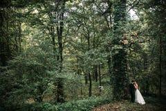 Levantamento bonito dos pares do casamento fotos de stock royalty free