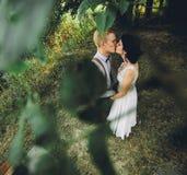 Levantamento bonito dos pares do casamento Fotografia de Stock