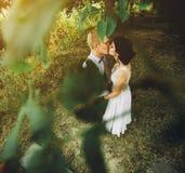 Levantamento bonito dos pares do casamento foto de stock