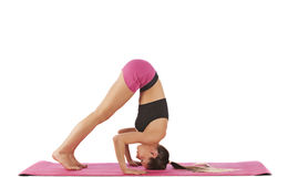 Levantamento bonito novo da ioga da menina Fotografia de Stock Royalty Free
