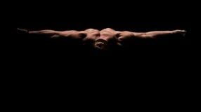 Levantamento do Bodybuilder fotos de stock