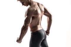 Levantamento do homem do halterofilista, mostrando o Abs perfeito, houlders, bíceps, tríceps, caixa foto de stock royalty free