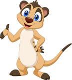 Levantamento do meerkat dos desenhos animados ilustração royalty free