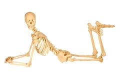 Levantamento humano do esqueleto foto de stock royalty free