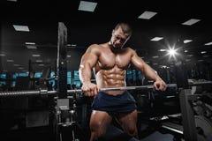Levantamento modelo da aptidão atlética muscular do halterofilista imagens de stock