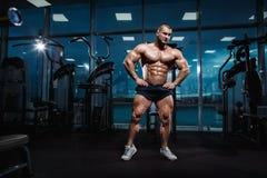 Levantamento modelo da aptidão atlética muscular do halterofilista fotografia de stock