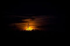 Levantamiento de la luna de cosecha Foto de archivo libre de regalías