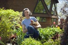 Levantando o retrato das galinhas em casa Foto de Stock