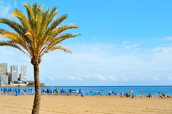 Levante Beach, in Benidorm, Spain Royalty Free Stock Images