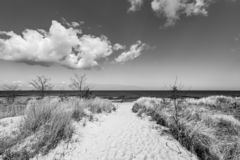 Levee with sandy path to beach at baltic sea stock photos