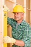 level mogen professional ande för handyman royaltyfria foton