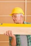 level mogen professional ande för handyman arkivbild