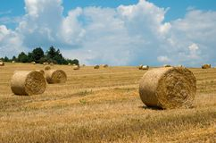Levels with bales. Levels after the harvest, with bales of straw Royalty Free Stock Photography