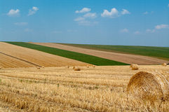 Levels with bales. Levels after the harvest, with bales of straw Royalty Free Stock Images