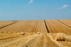 Levels with bales. Levels after the harvest, with bales of straw Royalty Free Stock Photos