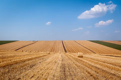 Levels with bales Royalty Free Stock Image