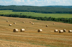 Levels with bales. Bales of straw. Levels after the harvest, with bales of straw Royalty Free Stock Images
