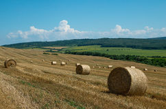 Levels with bales. Bales of straw. Levels after the harvest, with bales of straw Royalty Free Stock Photos
