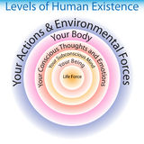 Levels of Human Existence Chart Royalty Free Stock Photography