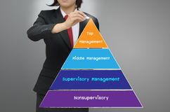 Levels of manpower management. Business woman drawing levels of manpower management Royalty Free Stock Images