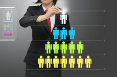 Levels of manpower management. Business woman drawing levels of manpower management Stock Image
