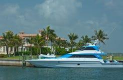 Leven Groot in Florida Royalty-vrije Stock Fotografie