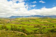 Levendig Groen Landschap Royalty-vrije Stock Afbeelding