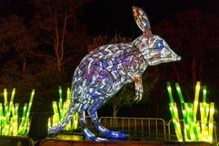 Levendig Sydney bij Taronga-Dierentuin bilby licht beeldhouwwerk stock foto's