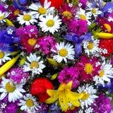 Levendige bloemenachtergrond met camomilies, lelies, pinks vector illustratie