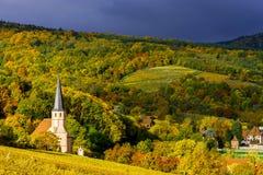 Levendige kleuren van de herfstwijngaarden in Andlau, de Elzas Royalty-vrije Stock Foto's
