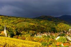 Levendige kleuren van de herfstwijngaarden in Andlau, de Elzas Stock Foto