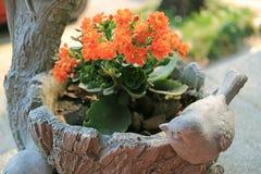 Levendige Oranje Kleurenbloemen van Vlammende Katy Succulent Plants in een Planter met Weinig Vogelbeeldhouwwerk stock foto's