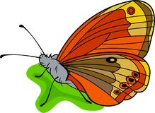 Levendige vlinder Royalty-vrije Stock Foto