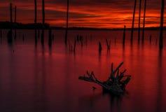 Levendige zonsopgang stock fotografie