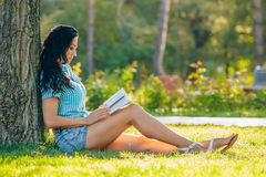 Levensstijl, de zomervakantie, onderwijs, literatuur royalty-vrije stock afbeelding