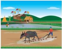 Levensstijl van landbouwer vector illustratie