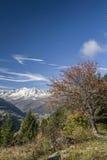 Leventina w jesieni Obrazy Royalty Free