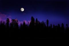 Lever de la lune de forêt Photographie stock