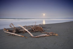 Lever de la lune de plage d'Ohope, Nouvelle-Zélande Photo stock