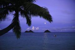 Lever de la lune en Hawaï image libre de droits