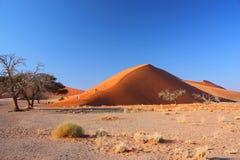 Lever de soleil à la dune 45 Images libres de droits